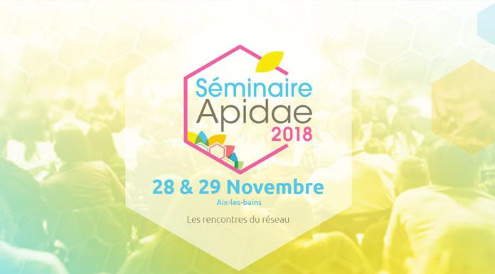Apidae - Seminaire 28 29 novembre 2018