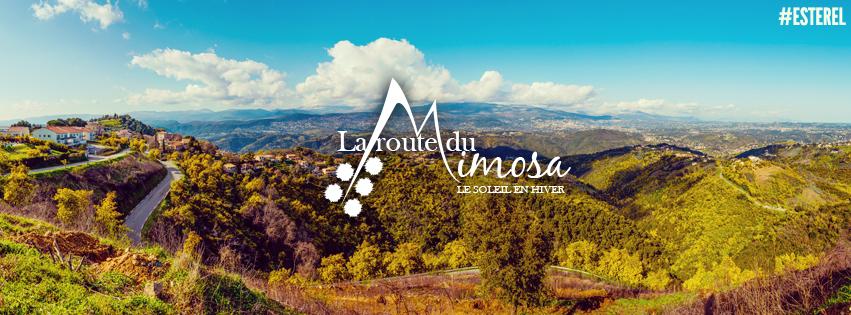 Un site web pour la route du mimosa