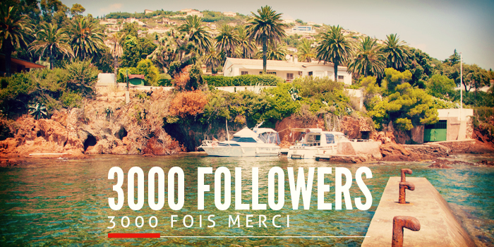 3000 followers sur Twitter
